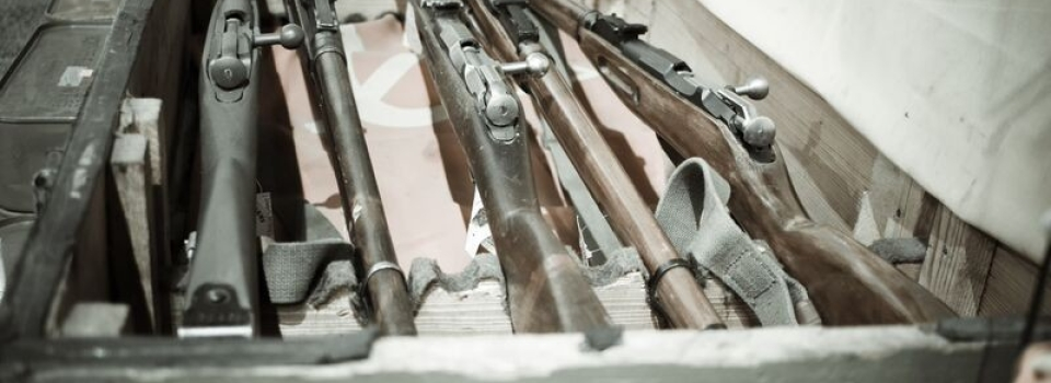 Long guns 1